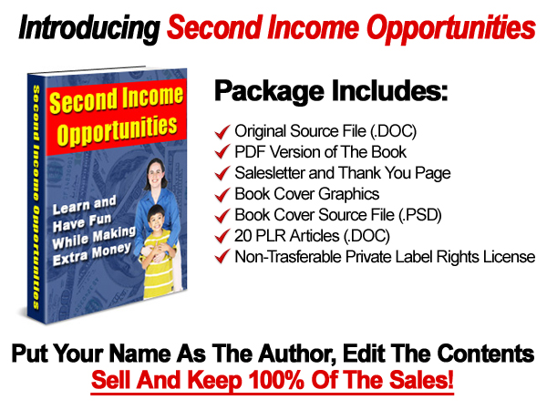 WSOGraphics Get Your Very Own Private Label Rights To This eBook